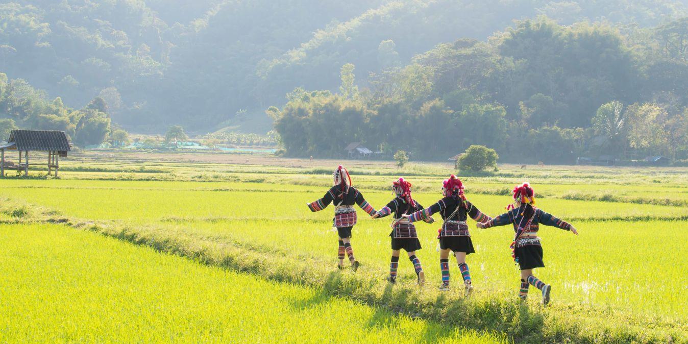 Paysages à couper le souffle dans les montagnes de Chiang Mai, avec des rizières et des enfants habillés de façon traditionnelle.